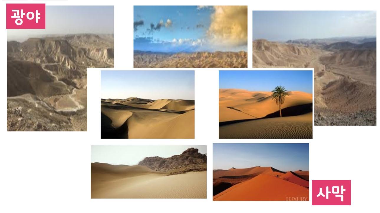광야-사막.jpg